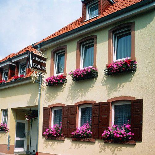 "Gästehaus ""Traube"""
